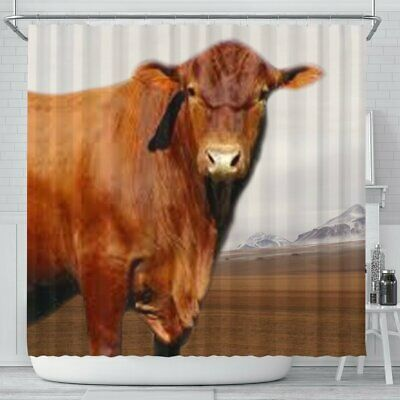 Senepol Cattle Cow Print Shower Curtain Free Shipping