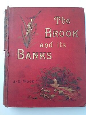 The Brook and its Banks, Rev J G Wood, c1890 Vintage Book