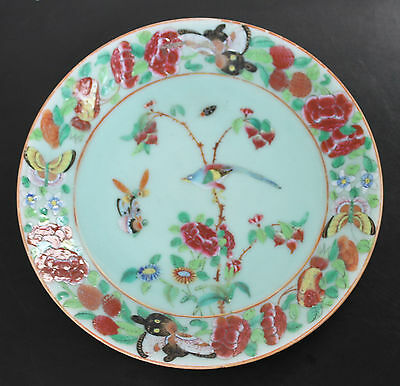 """9.1"""" Early C19th Chinese Celadon Plates /Floral Birds Butterfly Beetle - Jiaqing"""