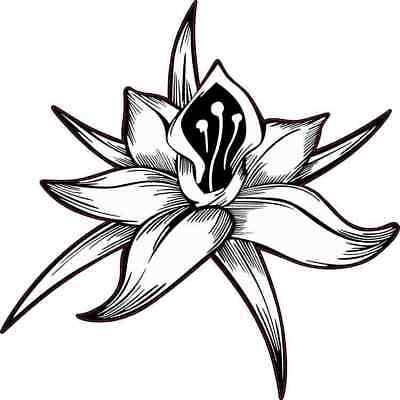Lotus Flower Symbol Car Bumper Sticker Decal 5 X 5