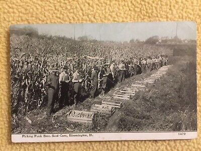 FUNK BROTHERS SEED CORN Vintage Advertising Postcard - Bloomington, Illinois