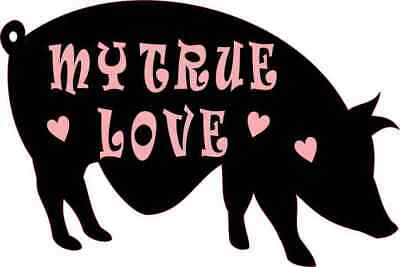 6X4 True Love Pot Belly Pig Sticker Vinyl Animal Pigs Funny Car Bumper Stickers