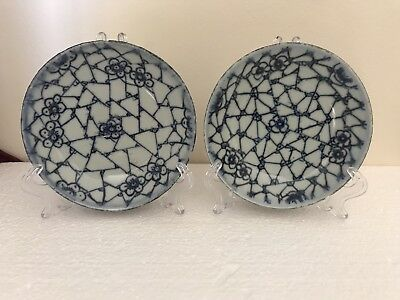 A pair of 19th century Chinese antique blue and white plates