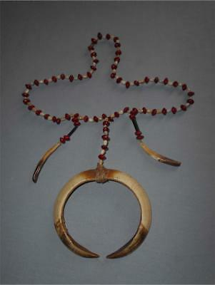 Old Papua TOP AGED USED ASMAT TRIBE SEED NECKLACE WITH BOAR TUSKS