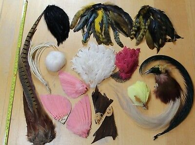vintage millinery exotic bird feathers wings Edwardian Victorian job lot antique