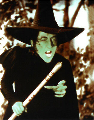 Wizard of Oz unsigned Wicked Witch of the West 8x10 Photo (Margaret Hamilton)