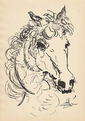 Salvador Dali'  Drawing  On Old Paper Horse