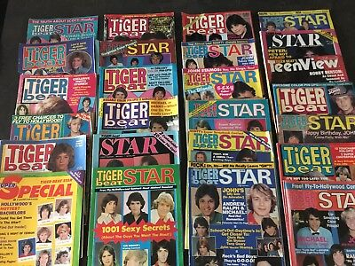 Lot Of 25 Vintage Magazine Tiger Beat Star Super Special Teen View Stamos Baio