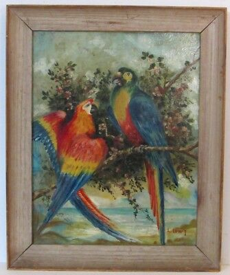 Fine Antique  Painting Of Two Parrot Oil On Canvas Signed