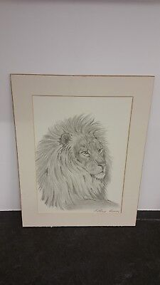 Used excellent condition hand drawn signed lion picture black and white