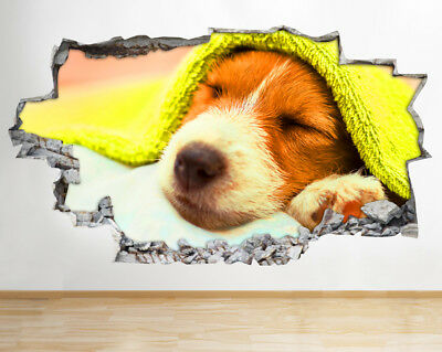 Wall Stickers Dog Grooming Salon Animals Smashed Decal 3D Art Hole Room S414