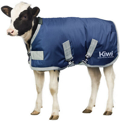 Kiwi Premium Calf Coat | Calf Jacket by AniMac | 3 Sizes | Waterproof | Metal