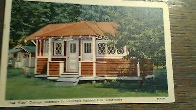 'red Wing Cottage Rosemary Inn Vintage Post Card Olympic National Park Wa..