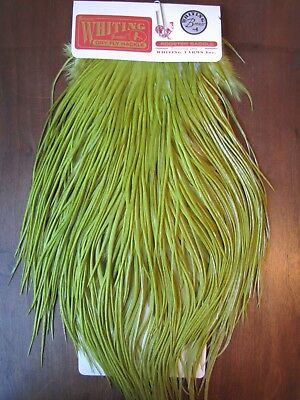 Angelsport-Artikel Fly Tying Whiting Silver Rooster Saddle White dyed Olive #B