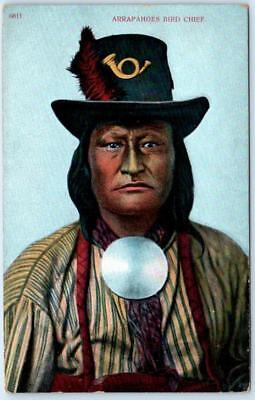 Native American  ARAPAHOE BIRD CHIEF  ca 1910s Indian Postcard