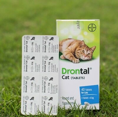 Cat Drontal for Cats Kitten, 4,8,12,16 Tablets Tapeworm Dewormer Roundworm Bayer