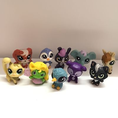 10PCS Hasbro Littlest Pet Shop LPS  Bird Horse Dog Animals Mini Figure Toys Gift
