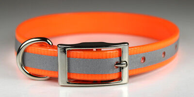 """25"""" 1"""" Reflective Name Collar w/ D ring & Brass Tag Plate Pet Hunting Dog"""