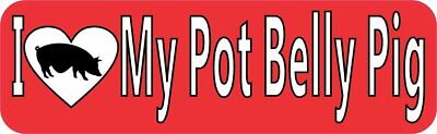 10in x 3in I Love My Pot Belly Pig Bumper Sticker Decal Stickers Decals