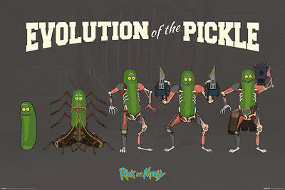 Rick And Morty Evolution Of The Pickle  91.5 X 61Cm Maxi Poster New Official