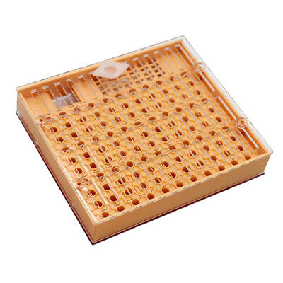 Beekeeping Complete Queen Bee Rearing Cell Cupkit Box System Set Tool