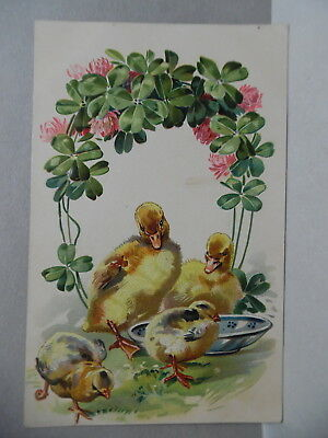 Pc2368 - EASTER - ADVERTISING  HEYDT 'S BAKERY ST LOUIS - DUCKS AND CHICKS