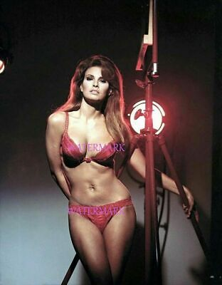 Sexy Model Actress Sex-Idol Raquel Welch In Red Lingerie Bikini Publicity Photo