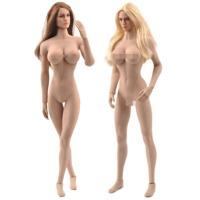 DIY TBLeague PHICEN 1/6 Female Skeleton Seamless Suntan Figure Body+KIMI Heads!!