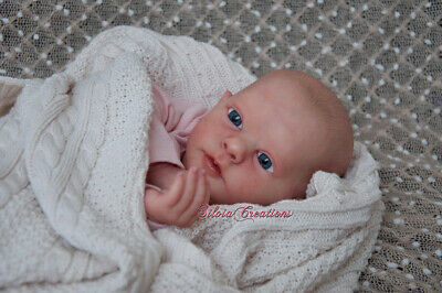"Reborn Doll Kit ""realborn Evelyn Awake"" 19"" (Unpainted)"