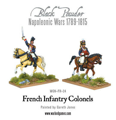 Napoleonic Wars: Mounted French Colonels
