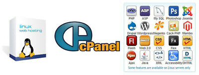 cPanel Hosting for 1 Year with 100GB Storage on SSD Drives