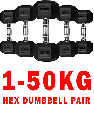 Hex Dumbbells Rubber Encased Ergo Weights Sets Hexagonal Dumbbell Gym Fitness