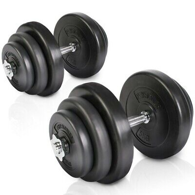 20kg Dumbbell Set Free Weights Cast Iron Handle Fitness Biceps Gym Home Workout