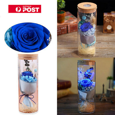 Rose Bottle LED Lamp Dimmer ROMANTIC Flower with Remote Control Night Light