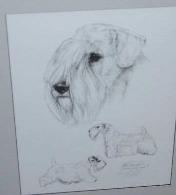 Standard Schnauzer Framed Pencil Signed Numbered Print Lyn St. Clair Stubbs 1989