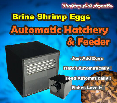 Brine Shrimp Egg Automatic Hatchery & Aquarium Feeder Saltwater No Air Pump Need