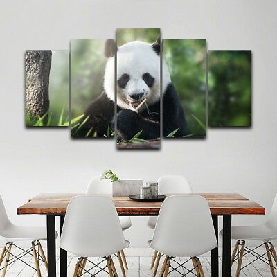 Panda Bear Spirit Animal Framed Poster 5 Panel Canvas Print Wall Art Home Decor
