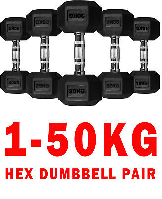 Hex Metal Dumbbells Rubber Encased Weights Sets Hexagonal Dumbbell Gym Tricep