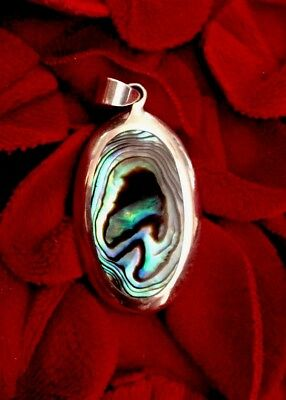 Mother Of Pearl Abalone Shell /Dangle /Pendant For Necklace