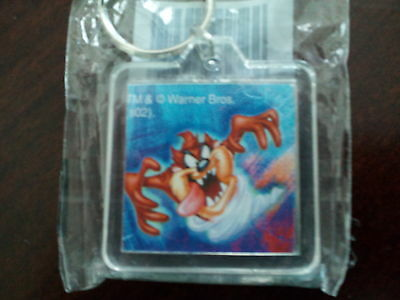 Warner Bros. Looney Tunes Tazmanian Devil Taz Lucite Double Sided Keychain