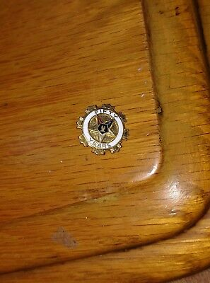 Mason Order of Eastern Star gold tone jewelry Fifty 50 Years star pin Freemason