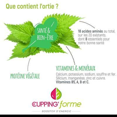 TISANE ORTIE 100% naturelle Cupping forme 50g vrac infusion Thé