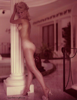 Bunny Yeager 1960s Color Camera Transparency Sultry Pin-Up Pose Elaina Lekas Mod
