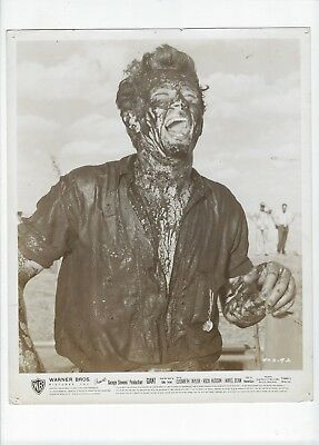 James Dean Giant Warner Brothers Movie Lobby Card No Reserve!!!