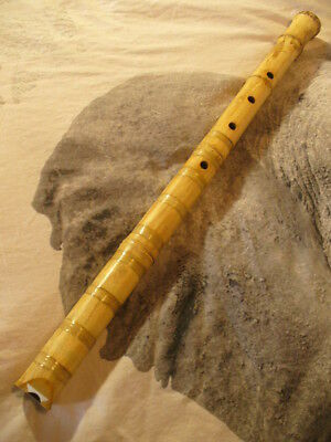 shakuhachi 2.1 in B roots-end