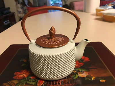 Vintage 1qt. Enamel over Cast Iron Tea Kettle Hot Water Pot Collectible >>> L@@K