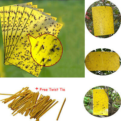 20/10Pc Yellow Sticky Insect Killer Whitefly Thrip Fruit Fly Gnat Leafminer Trap