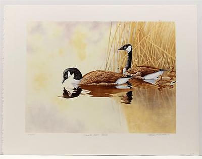 Vintage MICHAEL BUDDEN Wildlife Canadian Geese Family Lithograph SIGNED #32