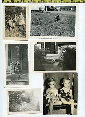 (19) Vintage photo lot / CATS - Pets KITTENS Kitty Felines OLD SNAPSHOTS 1925-60