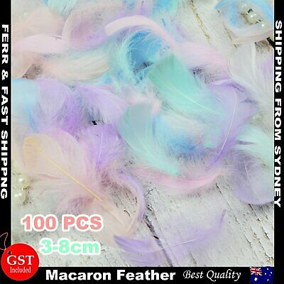 100x Macaron Mixed Colour 3-8cm Goose Feathers DIY Craft Dream Catcher Party AU